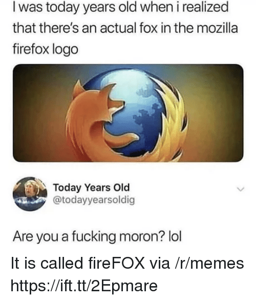 Fucking, Lol, and Memes: I was today years old when i realized  that there's an actual fox in the mozilla  firefox logo  Today Years Old  @todayyearsoldig  Are you a fucking moron? lol It is called fireFOX via /r/memes https://ift.tt/2Epmare