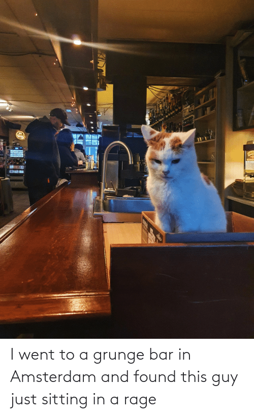 Found: I went to a grunge bar in Amsterdam and found this guy just sitting in a rage