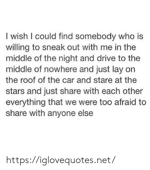 Drive, Stars, and The Middle: I wish I could find somebody who is  willing to sneak out with me in the  middle of the night and drive to the  middle of nowhere and just lay on  the roof of the car and stare at the  stars and just share with each other  everything that we were too afraid to  share with anyone else https://iglovequotes.net/