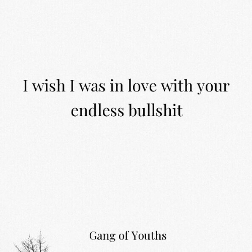 endless: I wish I was in love with your  endless bullshit  Gang of Youths