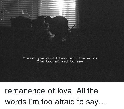 Love, Target, and Tumblr: I wish you could hear all the words  m too afraid to say remanence-of-love:  All the words I'm too afraid to say…