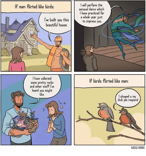 Beautiful, Birds, and Dick: I wll perform the  sensual dance which  I have practiced for  a whole year just  to impress you.  If men flirted like birds:  ľve built you this  beautiful house.  I have collected  some pretty rocks  and other stuff I've  heard you might  like  If birds flirted like mern:  I showed u my  dick pls respond  b0  Kasia BaBIS