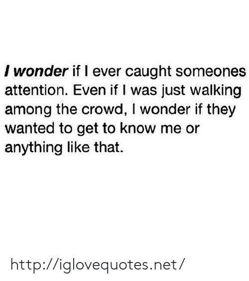 Http, Wonder, and Net: I wonder if l ever caught someones  attention. Even if I was just walking  among the crowd, I wonder if they  wanted to get to know me or  anything like that. http://iglovequotes.net/