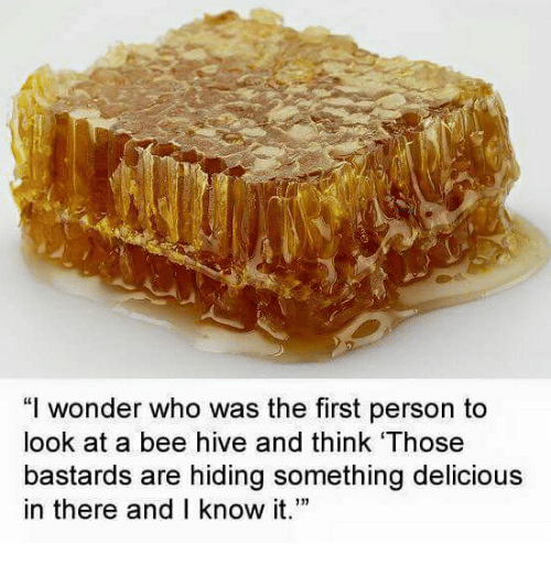 """hives: """"I wonder who was the first person to  look at a bee hive and think Those  bastards are hiding something delicious  in there and I know it."""""""