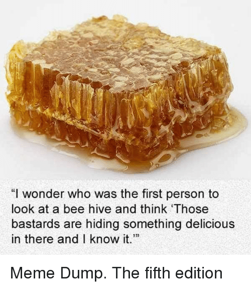 """Meme, Wonder, and Hive: """"I wonder who was the first person to  look at a bee hive and think Those  bastards are hiding something delicious  in there and I know t Meme Dump. The fifth edition"""