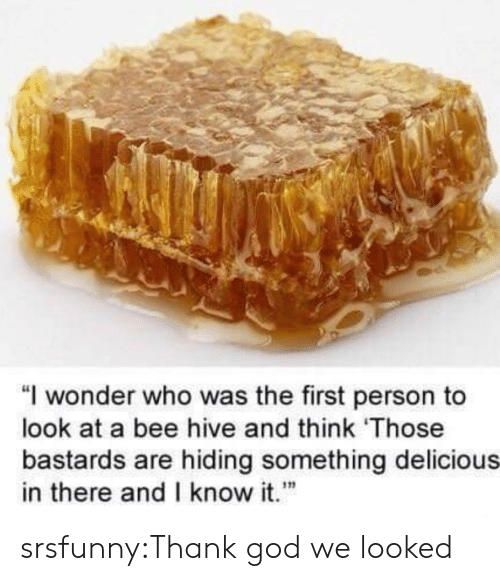"""God, Tumblr, and Blog: """"I wonder who was the first person to  look at a bee hive and think Those  bastards are hiding something delicious  in there andI know it""""  เท srsfunny:Thank god we looked"""