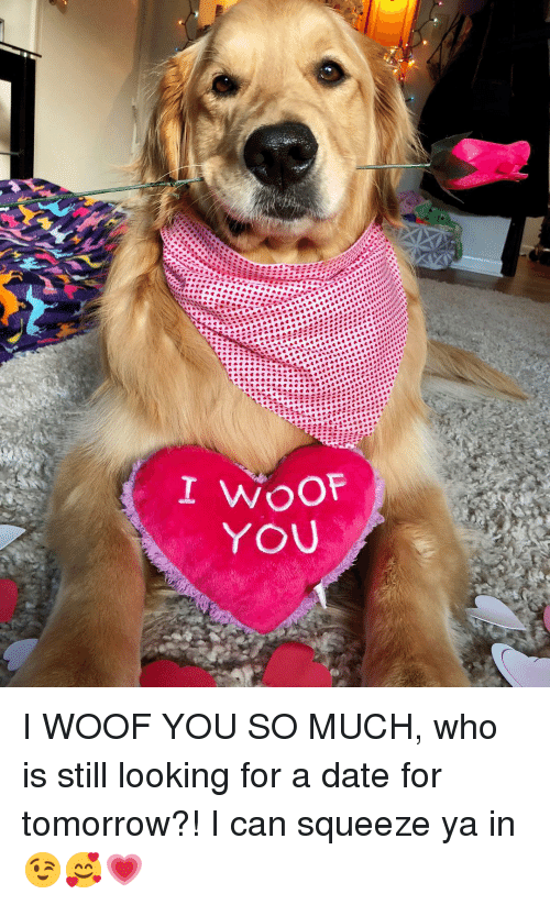 Memes, Date, and Tomorrow: I WOOF YOU SO MUCH, who is still looking for a date for tomorrow?! I can squeeze ya in😉🥰💗