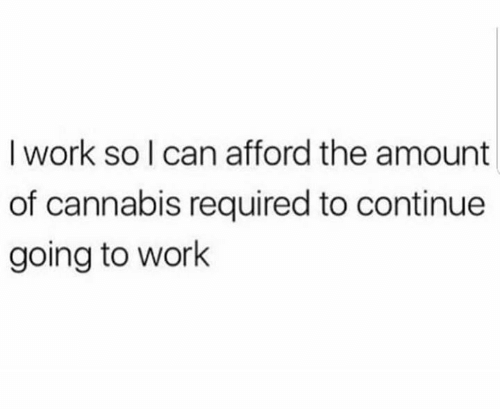 Cannabis: I work so I can afford the amount  of cannabis required to continue  going to work