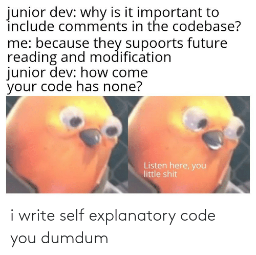 Write: i write self explanatory code you dumdum