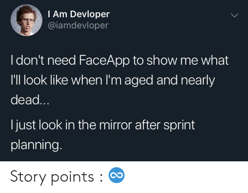Mirror, Sprint, and The Mirror: IAm Devloper  @iamdevloper  Idon't need FaceApp to show me what  I'Il look like when I'm aged and nearly  dead...  I just look in the mirror after sprint  planning. Story points : ♾