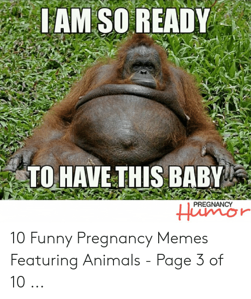 Funny Pregnancy Memes: IAM SO READY  TO HAVETHIS BABY  PREGNANCY  Humor 10 Funny Pregnancy Memes Featuring Animals - Page 3 of 10 ...