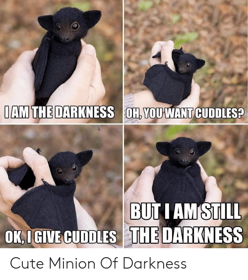 iam: IAM THE DARKNESS OH, YOUWANT CUDDLES?  BUT I AM STILL  OK,IGIVE CUDDLES THE DARKNESS Cute Minion Of Darkness