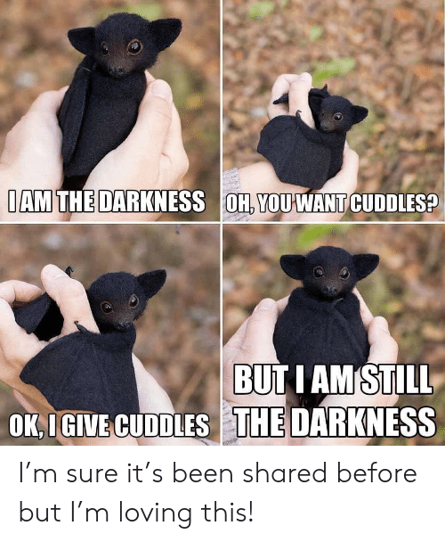 iam: IAM THE DARKNESS OH, YOUWANT CUDDLES?  BUTI AM STILL  OK IGIVE CUDDLES THE DARKNESS I'm sure it's been shared before but I'm loving this!