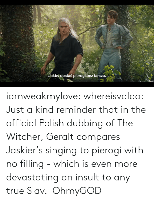 Official: iamweakmylove:  whereisvaldo:  Just a kind reminder that in the official Polish dubbing of The Witcher, Geralt compares Jaskier's singing to pierogi with no filling - which is even more devastating an insult to any true Slav.    OhmyGOD