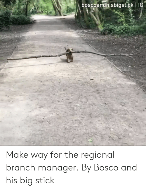 Dank, 🤖, and Big:   IC  boscoandhisbigstick Make way for the regional branch manager.  By Bosco and his big stick