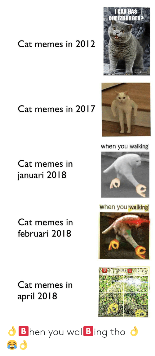 cheezburger: ICAN HAS  CHEEZBURGER?  Cat memes in 2012  Cat memes in 2017  when you walking  Cat memes in  januari 2018  when you walking  Cat memes in  februari 2018  Cat memes in  april 2018 👌🅱️hen you wal🅱️ing tho 👌😂👌