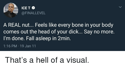 Fall, Head, and Ice-T: ICE T e  @FINALLEVEL  GRA  AWA  A REAL nut... Feels like every bone in your body  comes out the head of your dick... Say no more.  I'm done. Fall asleep in 2min.  1:16 PM 19 Jan 11 That's a hell of a visual.