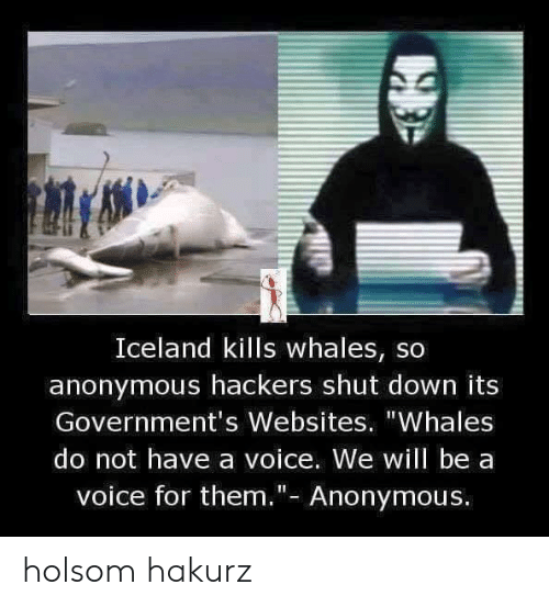 "Anonymous, Iceland, and Voice: Iceland kills whales, so  anonymous hackers shut down its  Government's Websites. ""Whales  do not have a voice. We will be a  voice for them.""- Anonymous. holsom hakurz"