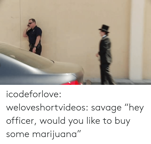 "Marijuana: icodeforlove: weloveshortvideos:  savage  ""hey officer, would you like to buy some marijuana"""