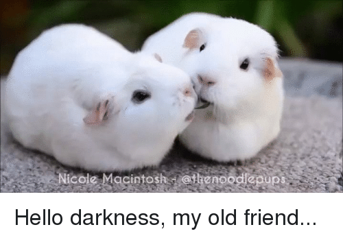 Darkness My Old Friend
