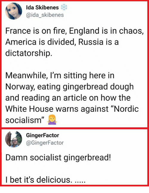 """America, England, and Fire: Ida Skibenes  @ida_skibenes  France is on fire, England is in chaos,  America is divided, Russia is a  dictatorship.  Meanwhile, l'm sitting here in  Norway, eating gingerbread dough  and reading an article on how the  White House warns against """"Nordic  socialism""""  GingerFactor  @GingerFactor  Damn socialist gingerbread!  I bet it's delicious."""