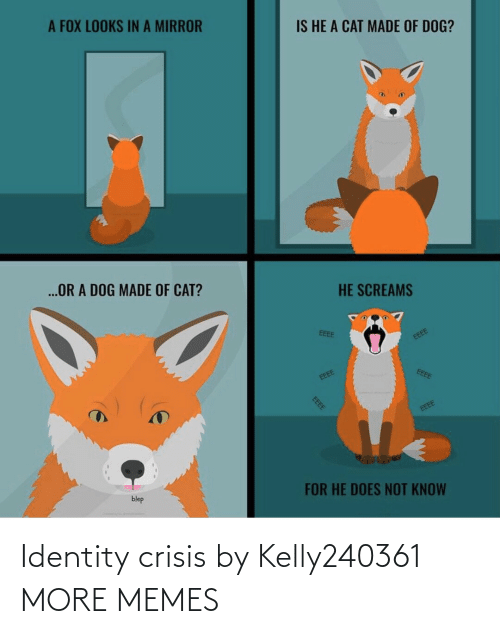 crisis: Identity crisis by Kelly240361 MORE MEMES