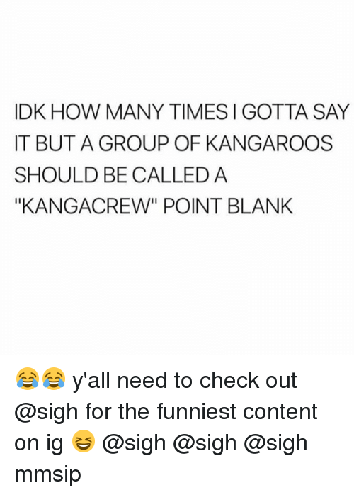 """kangaroos: IDK HOW MANY TIMES I GOTTA SAY  IT BUT A GROUP OF KANGAROOS  SHOULD BE CALLED A  """"KANGACREW"""" POINT BLANK 😂😂 y'all need to check out @sigh for the funniest content on ig 😆 @sigh @sigh @sigh mmsip"""