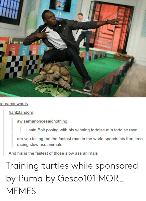 Animals, Ass, and Dank: idreaminwords:  frantzfandom  awisemanoncesaidnothing:  Usain Bolt posing with his winning tortoise at a tortoise race  are you telling me the fastest man in the world spends his free time  racing slow ass animals  And his is the fastest of those slow ass animals Training turtles while sponsored by Puma by Gesco101 MORE MEMES