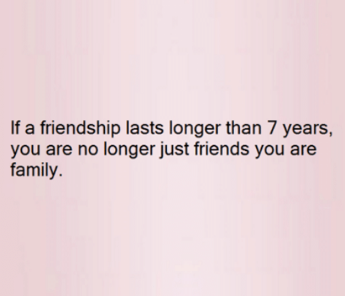 Family, Friends, and Memes: If a friendship lasts longer than 7 years,  you are no longer just friends you are  family.