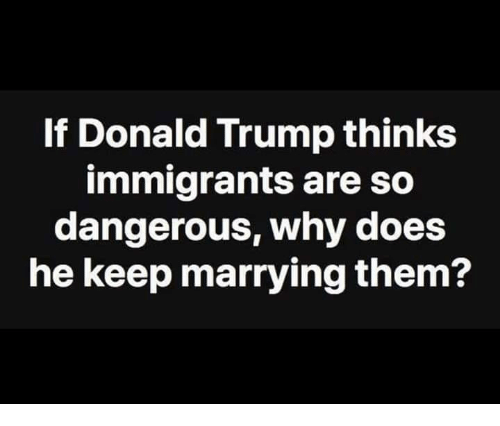 Donald Trump, Memes, and Trump: If Donald Trump thinks  immigrants are so  dangerous, why does  he keep marrying them?