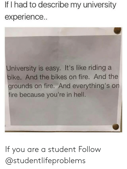 riding a bike: If I had to describe my university  experience.  University is easy. It's like riding a  bike. And the bikes on fire. And the  grounds on fire. And everything's on  fire because you're in hell. If you are a student Follow @studentlifeproblems
