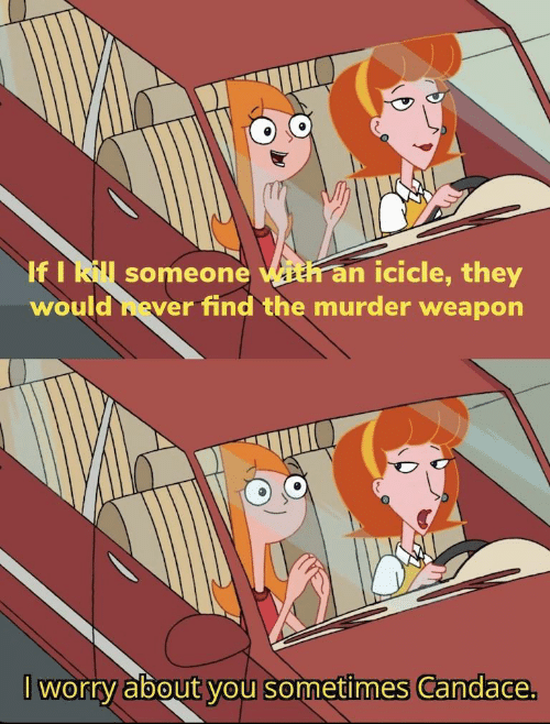 Murder, Weapon, and They: If I Rl someone with an icicle, they  would hever find the murder weapon  worry about you sometimes Candace.