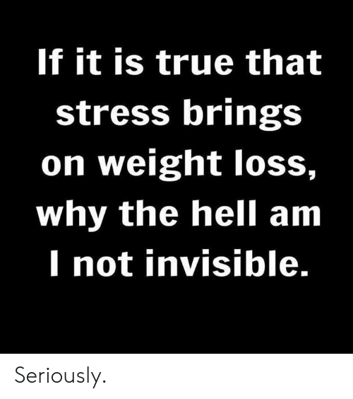 Dank, True, and Hell: If it is true that  stress brings  on weight loss,  why the hell am  I not invisible. Seriously.