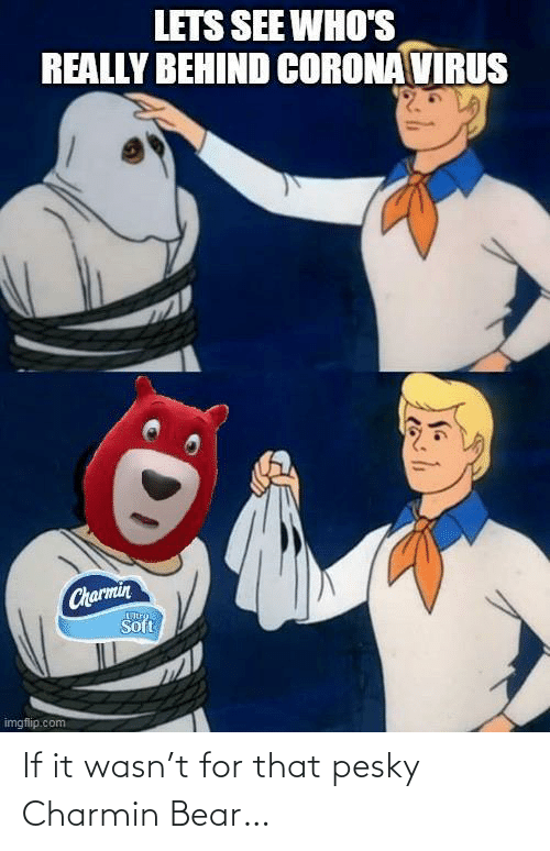 If It: If it wasn't for that pesky Charmin Bear…