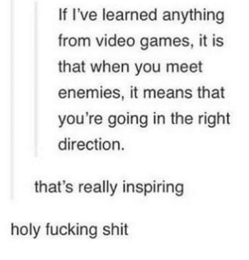 holy fucking shit: If I've learned anything  from video games, it is  that when you meet  enemies, it means that  you're going in the right  direction.  that's really inspiring  holy fucking shit