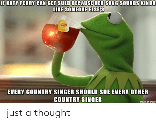 Katy Perry: IF KATY PERRY CAN GET SUED BECAUSE HER SONG SOUNDS KINDA  LIKE SOMEONE ELSE'S  EVERY COUNTRY SINGER SHOULD SUE EVERY OTHER  COUNTRY SINGER  made on imgur just a thought