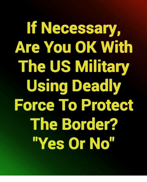 "us military: If Necessary,  Are You OK With  The US Military  Using Deadly  Force To Protect  The Border?  ""Yes Or No"""