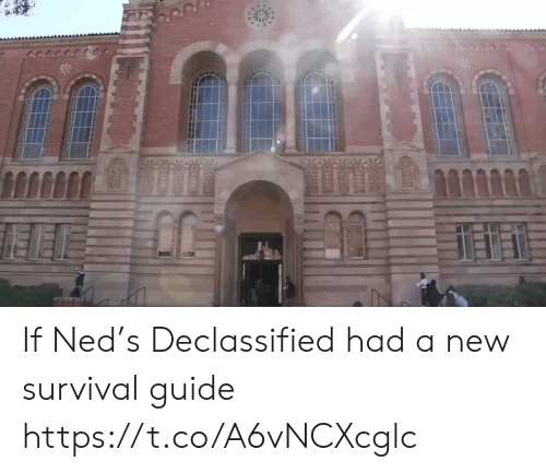 Funny, Survival, and Guide: If Ned's Declassified had a new survival guide https://t.co/A6vNCXcglc