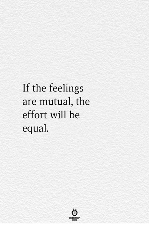 Will, Feelings, and Mutual: If the feelings  are mutual, the  effort will be  equal  RELATIONGHP