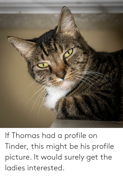 Tinder, Thomas, and Picture: If Thomas had a profile on Tinder, this might be his profile picture. It would surely get the ladies interested.