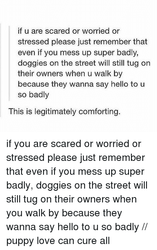tug: if u are scared or worried or  stressed please just remember that  even if you mess up super badly,  doggies on the street will still tug on  their owners when u walk by  because they wanna say hello to u  so badly  This is legitimately comforting. if you are scared or worried or stressed please just remember that even if you mess up super badly, doggies on the street will still tug on their owners when you walk by because they wanna say hello to u so badly // puppy love can cure all