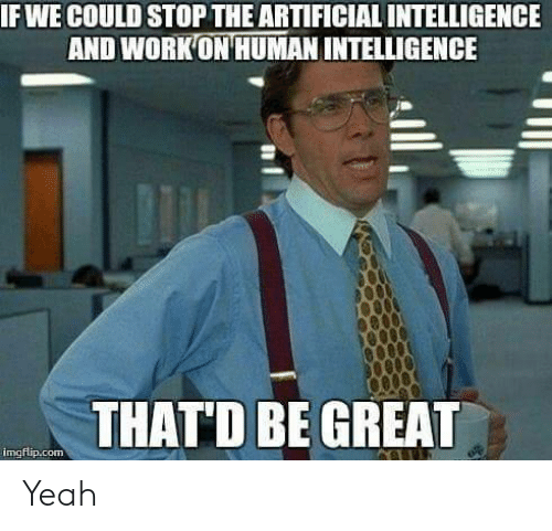 artificial intelligence: IF WE COULD STOP THE ARTIFICIAL INTELLIGENCE  AND WORKON HUMAN INTELLIGENCE  THATD BE GREAD  imgflip.com Yeah