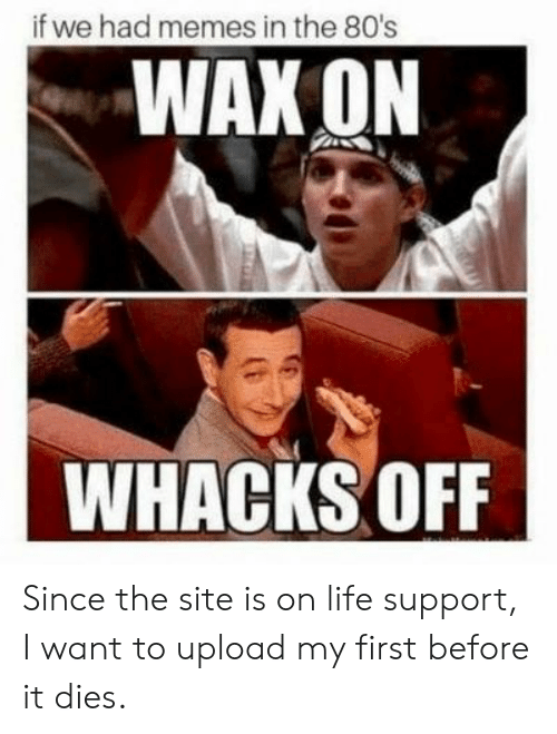 80s: if we had memes in the 80's  WAX ON  WHACKS OFF Since the site is on life support, I want to upload my first before it dies.