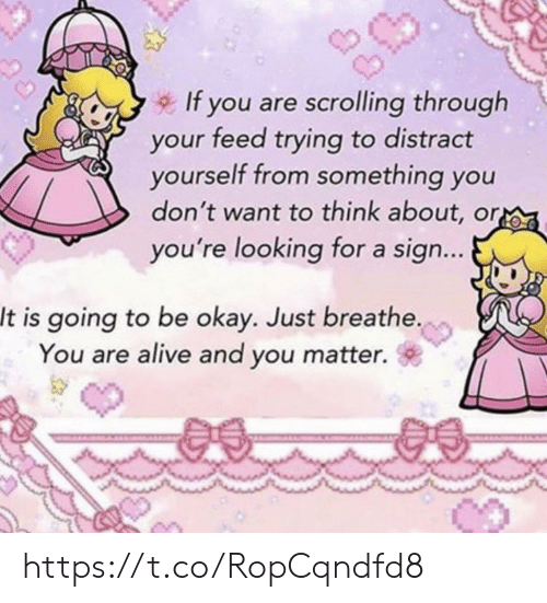 Alive, Memes, and Okay: If you are scrolling through  your feed trying to distract  yourself from something you  don't want to think about, or  you're looking for a sign...  It is going to be okay. Just breathe.  You are alive and you matter.  @a. https://t.co/RopCqndfd8