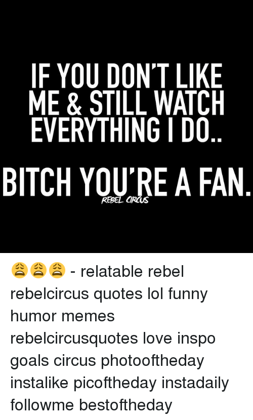 If You Dont Like Me Still Watch Everything I Do Bitch You