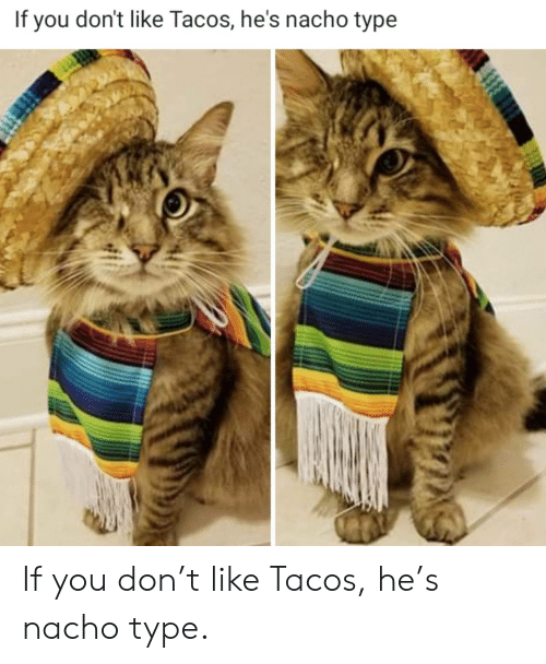 If You Don: If you don't like Tacos, he's nacho type If you don't like Tacos, he's nacho type.
