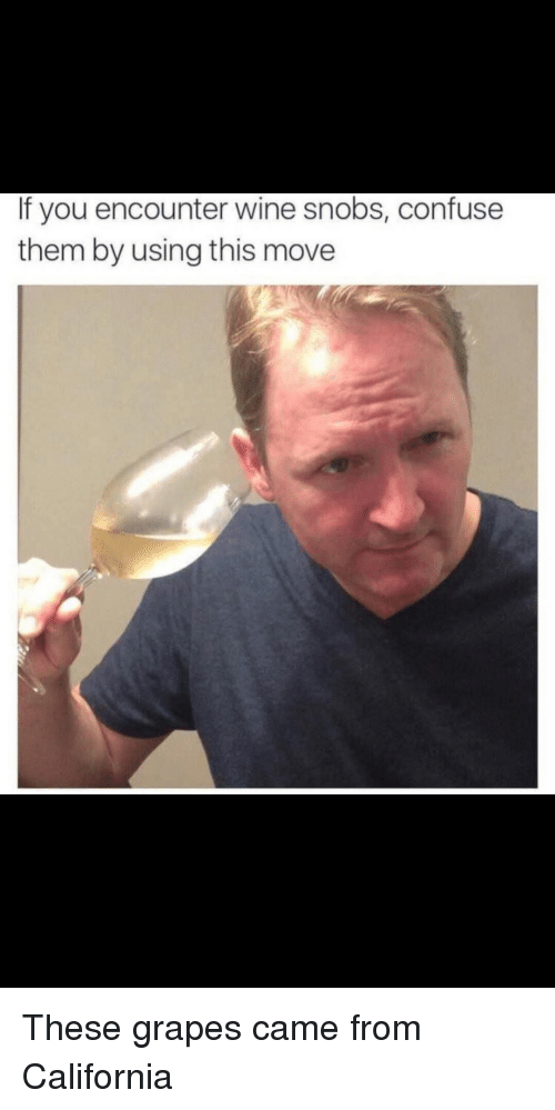 Wine, California, and Grapes: If you encounter wine snobs, confuse  them by using this move These grapes came from California
