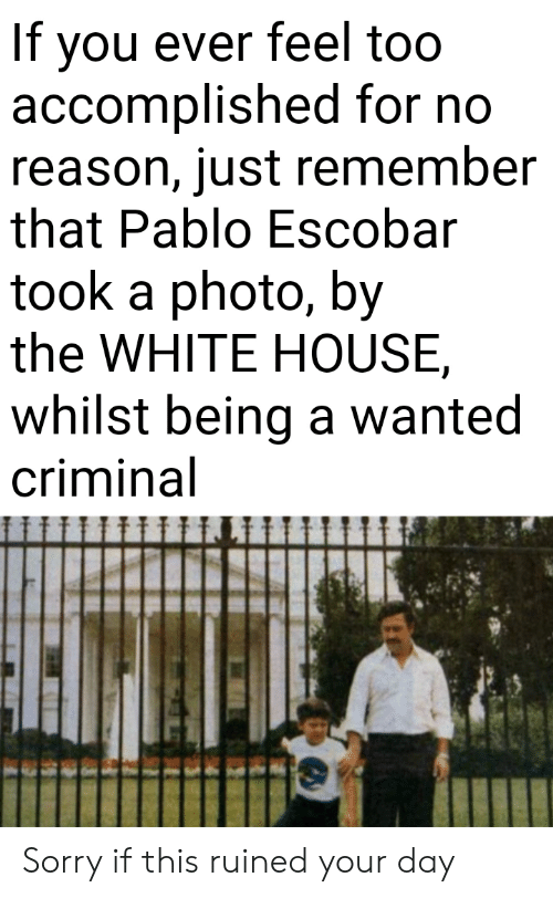 the white house: If you ever feel too  accomplished for no  reason, just remember  that Pablo Escobar  took a photo, by  the WHITE HOUSE  whilst being a wanted  criminal Sorry if this ruined your day