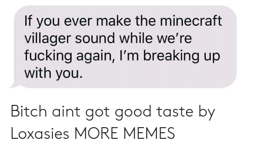 villager: If you ever make the minecraft  villager sound while we're  fucking again, I'm breaking up  with you. Bitch aint got good taste by Loxasies MORE MEMES