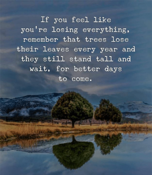 Days To: If you feel Like  you're losing everything,  remember that trees lose  their leaves every year and  they still stand tall and  wait, for better days  to come.